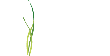 image: In Bliss logo