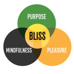 Ch.1 What is Bliss ©